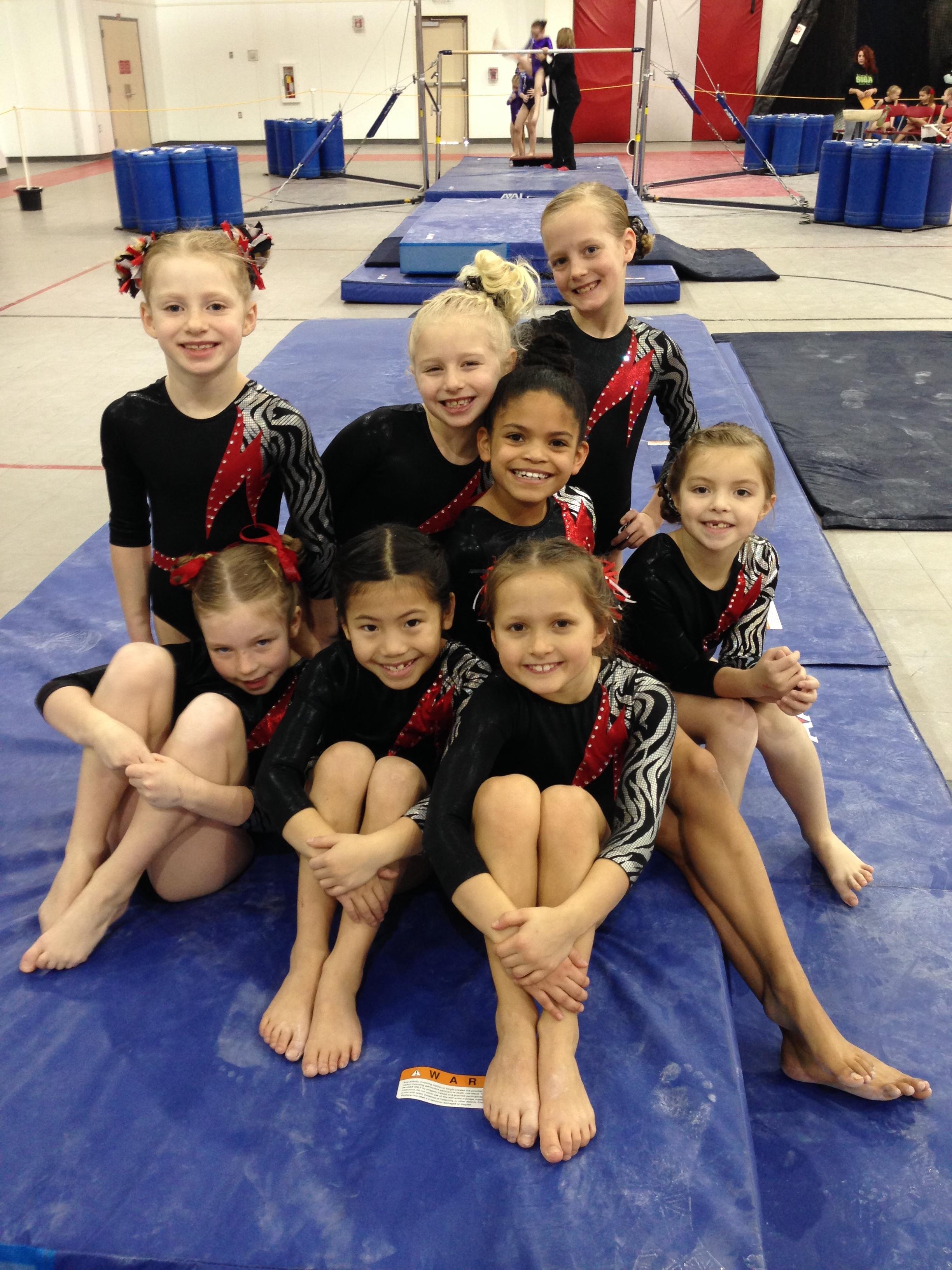 illinois level 8 state gymnastics meet 2014