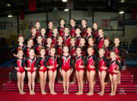 Level 3 Gymnastics Team