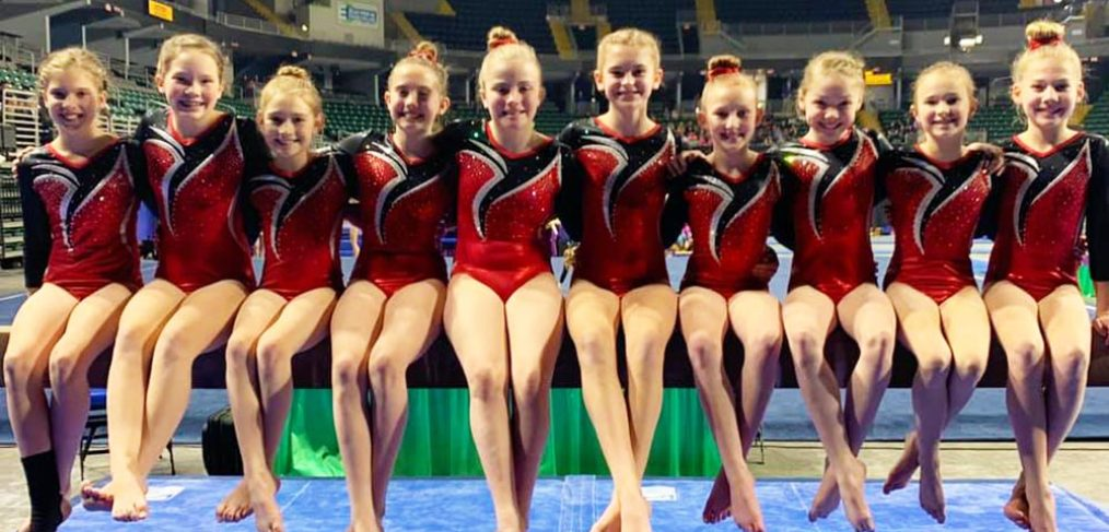 Level 4 gymnastics team