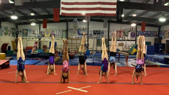 Cartwheel into the School Year!